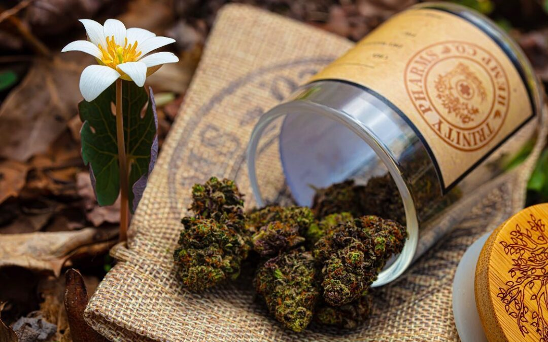 CBD Side Effects: The Good And The Bad