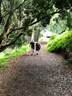 Great River Walk (Bridge-to-Bridge Loop) – Hound-friendly walks