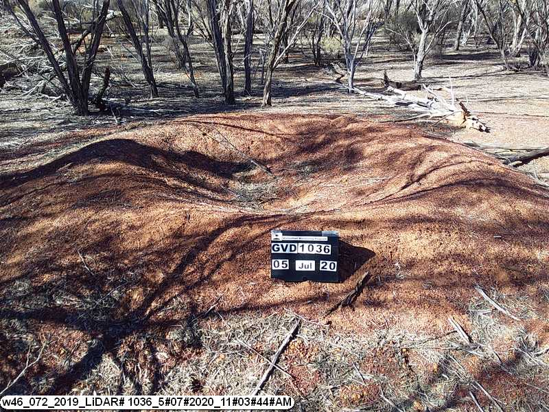 Ground truthing Malleefowl mounds in the GVD