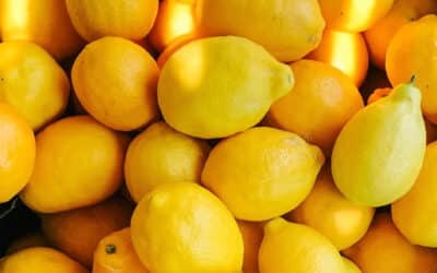 Learning Surrender from Lemons