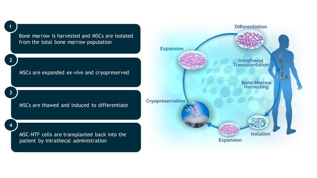BrainStorm (BCLI)