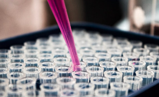 Generex Biotechnology Update on the Ii-Key COVID Vaccine