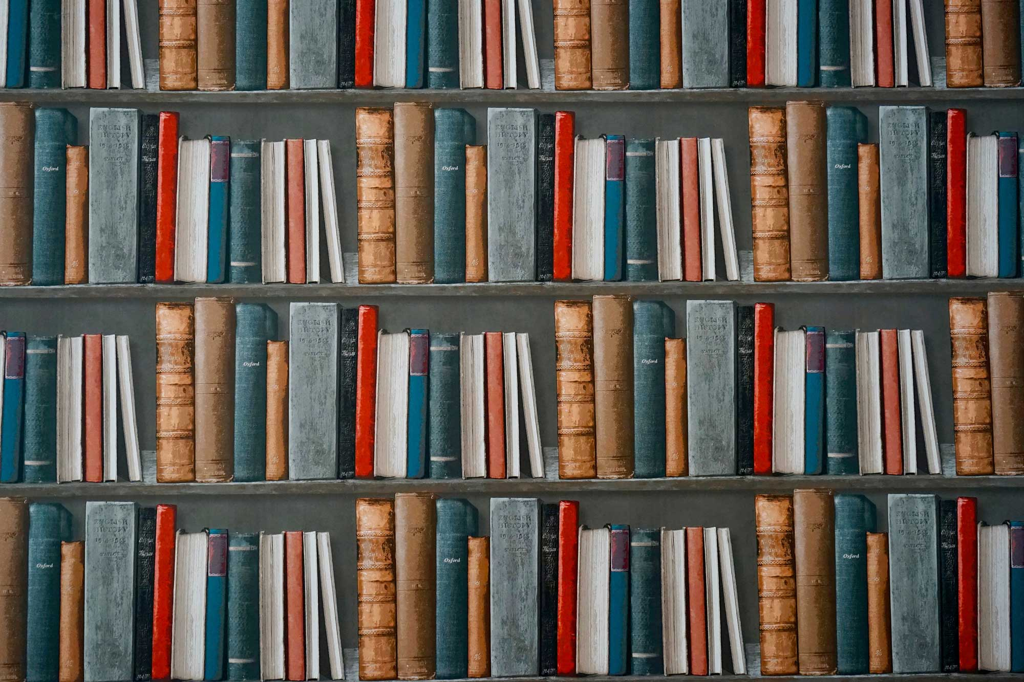 Why Read? 5 Reasons To Never Stop Reading