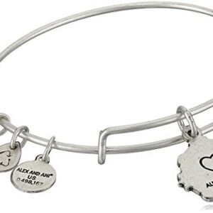 Alex and Ani Because I Love You Granddaughter III Bangle