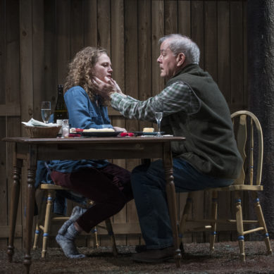 Review: YOU GOT OLDER at Steppenwolf Theatre Company