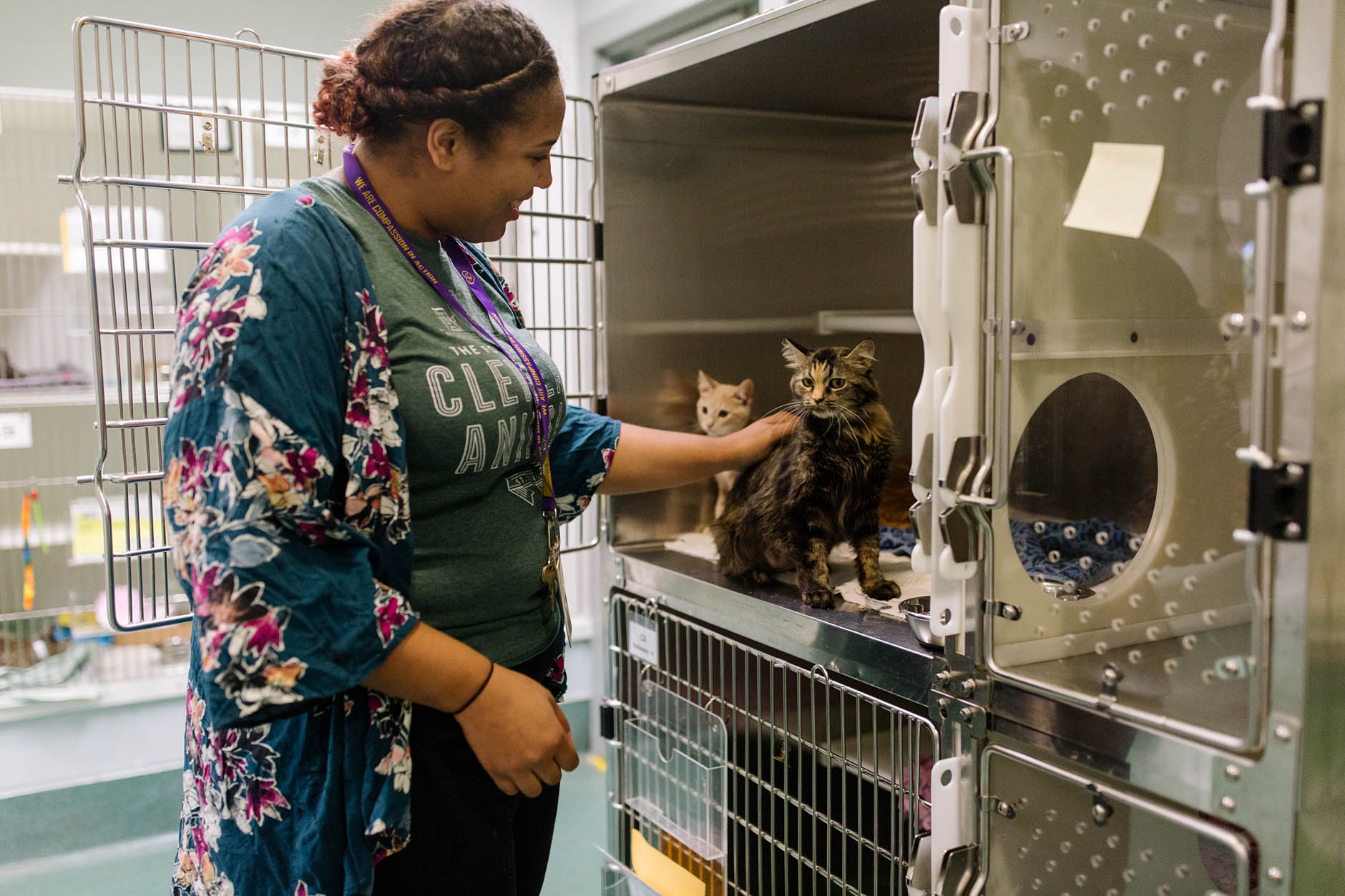 Your Neighborhood: Cleveland Animal Protective League