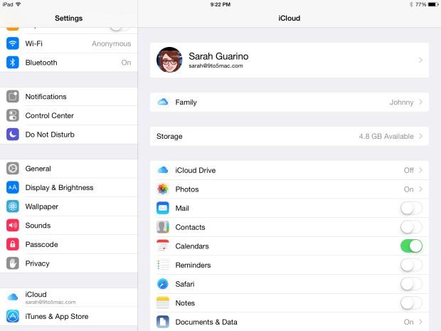 iPad Settings