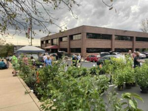 Native Plant Sale in parking lot