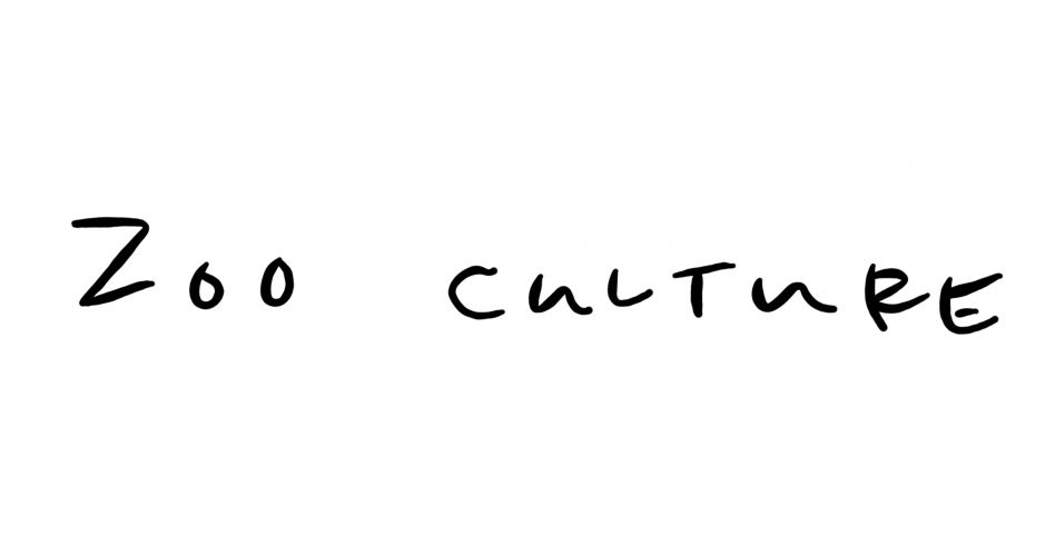 Zoo Culture Blog Cover