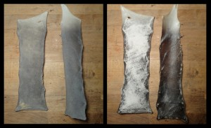 cured shark skin ©Ch. Dequincey -All rights reserved