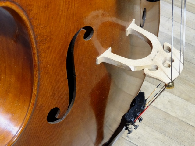 Poplar Cello all copyrights Ch. Dequincey