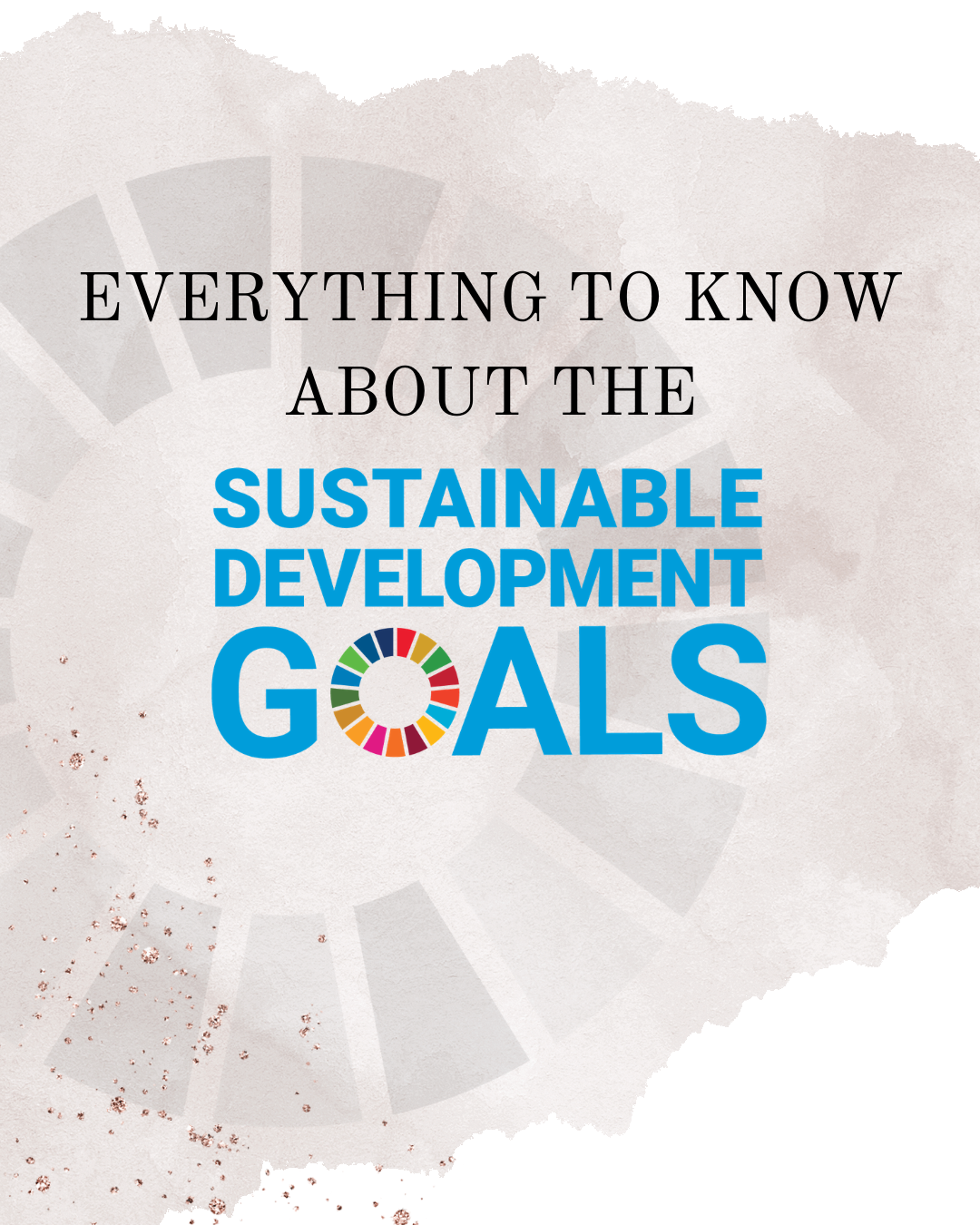 What Are The SDGs