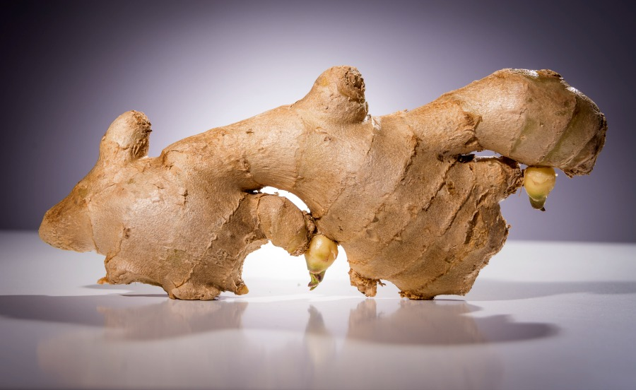 9 Health Benefits of Ginger for the Body and Mind. Ginger contains so many health benefits that it truly needs to be a part of your natural health routine. It is one of those ancient herbal remedies that has survived the test of time for a good reason. Whether you make a tea, cook with it, use essential oils and extracts, and more, it is effective! What is your favorite way to heal with ginger? #naturalhealth #herbalremedies #ginger #healthyliving
