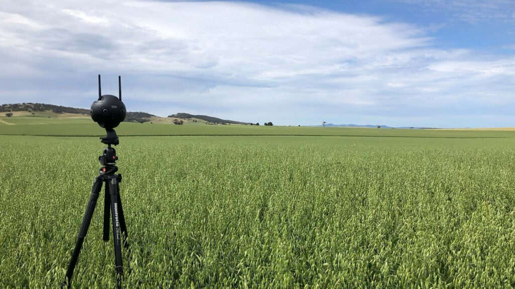 VR in agriculture