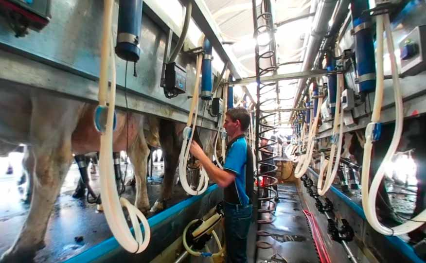 Dairy Virtual Reality