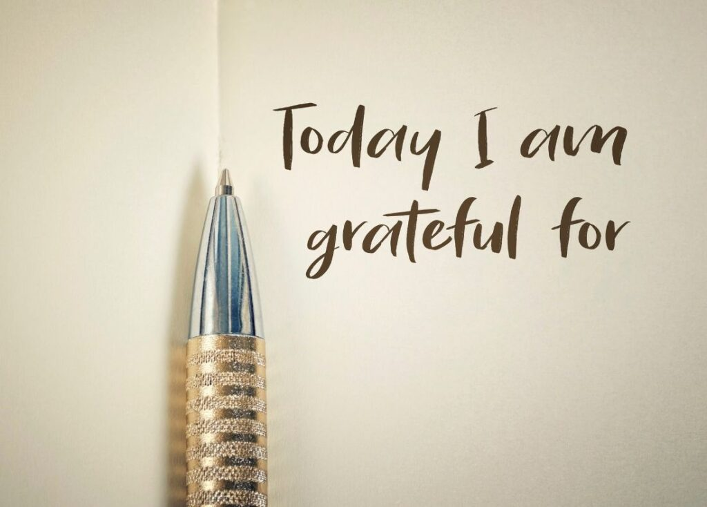 Best Gratitude Journal for The Busy Mom