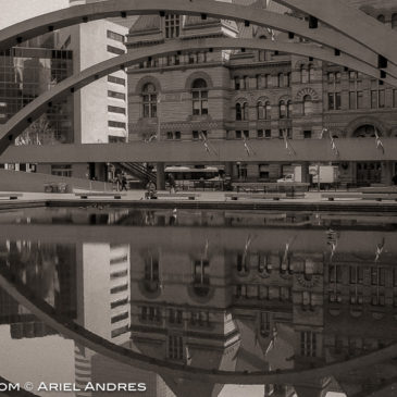 Another 365 Project – Day 57