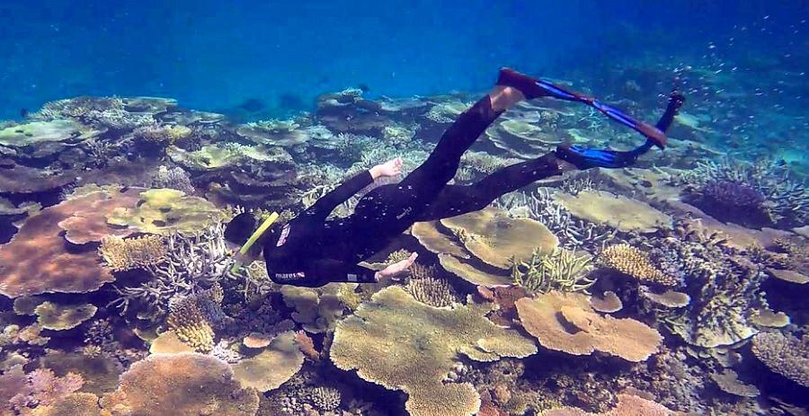 Great Barrier Reef