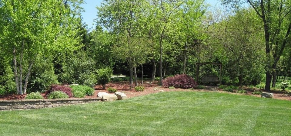 Protecting Your Landscape from Summer Heat