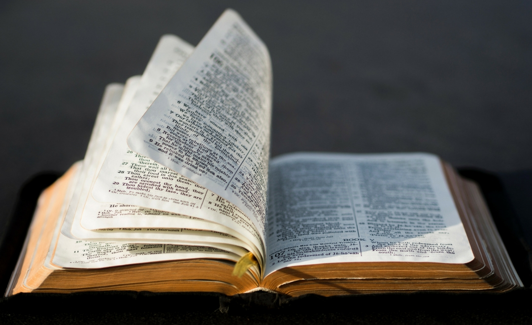 Bible Study: Book of Ruth
