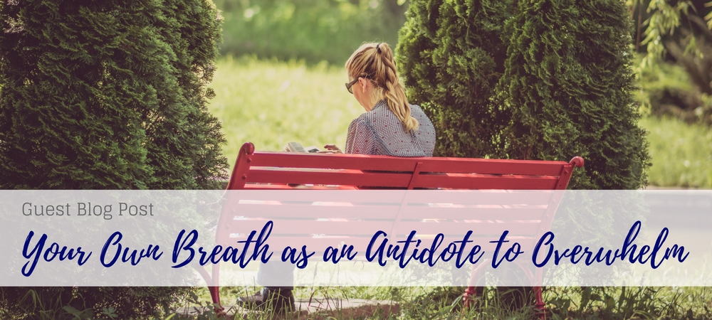 own breath as antidote to overwhelm