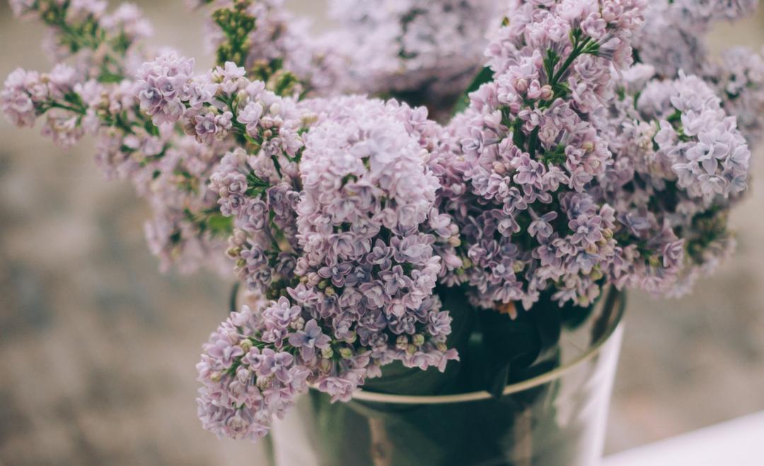 Finding Joy in Uncertain Times