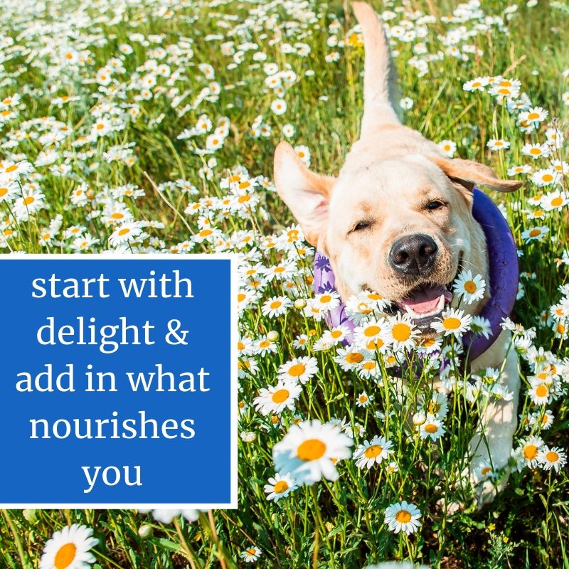 Tap Into what Delights and Nourishes You