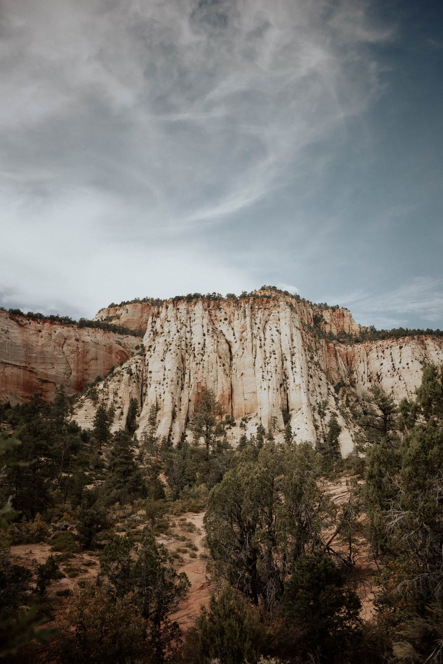 magnificent rocky cliff with green vegetation