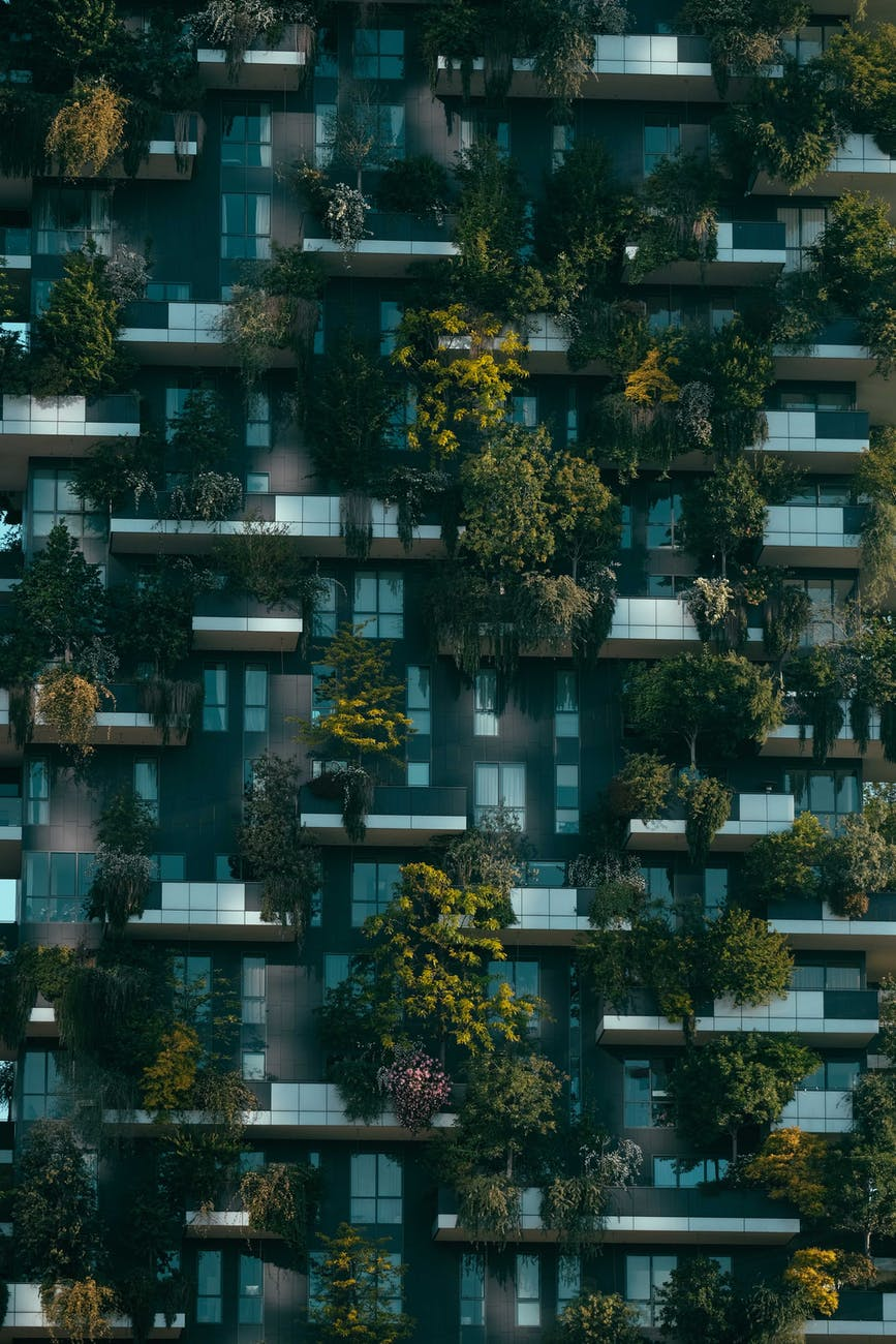 modern residential building facade decorated with green plants