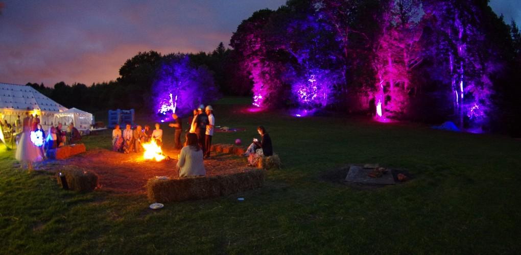 Outdoor Wedding Tree Uplighting