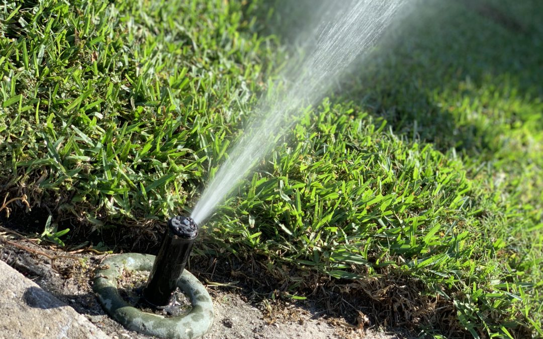 7 Things to Do Before Contacting Sprinkler Repair Service'