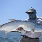 Catch tarpon like this fly fishing in Cuba