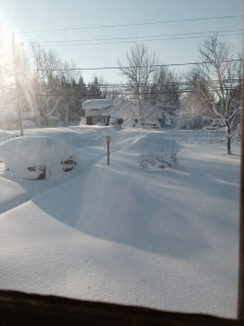 The morning after the first storm! My car is in there somewhere.