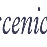 3DX Scenic.net Logo
