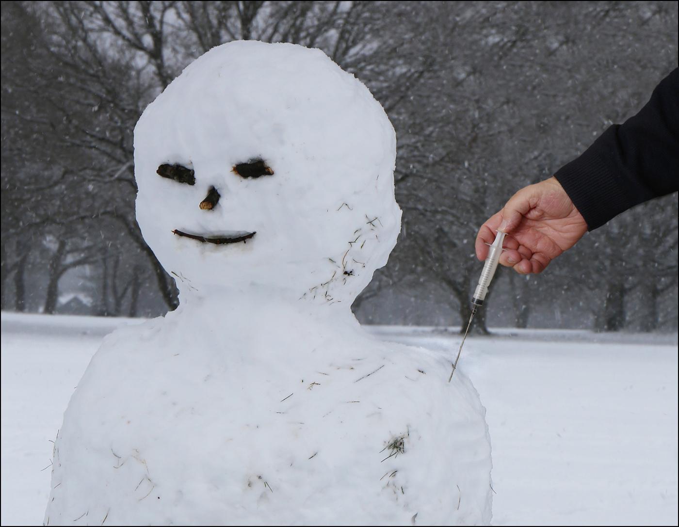 Snowman-vacc.jpg