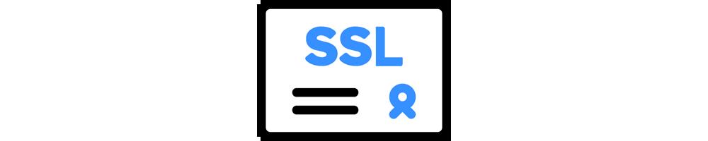 Standard SSL (Wildcard)
