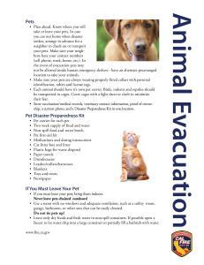 Animalevacuation-page-002