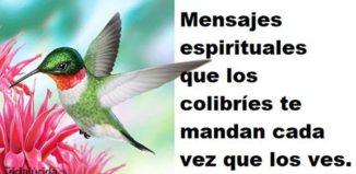 Mensajes espirituales de los colibríes