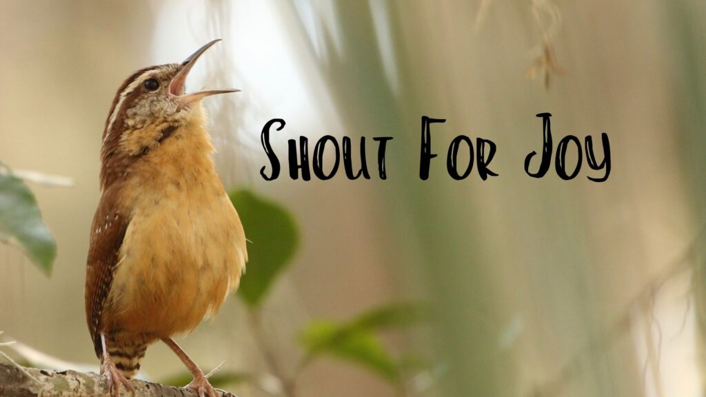 Sermon: Shout For Joy