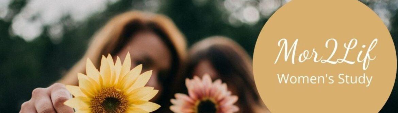 Christian Study: More To Life