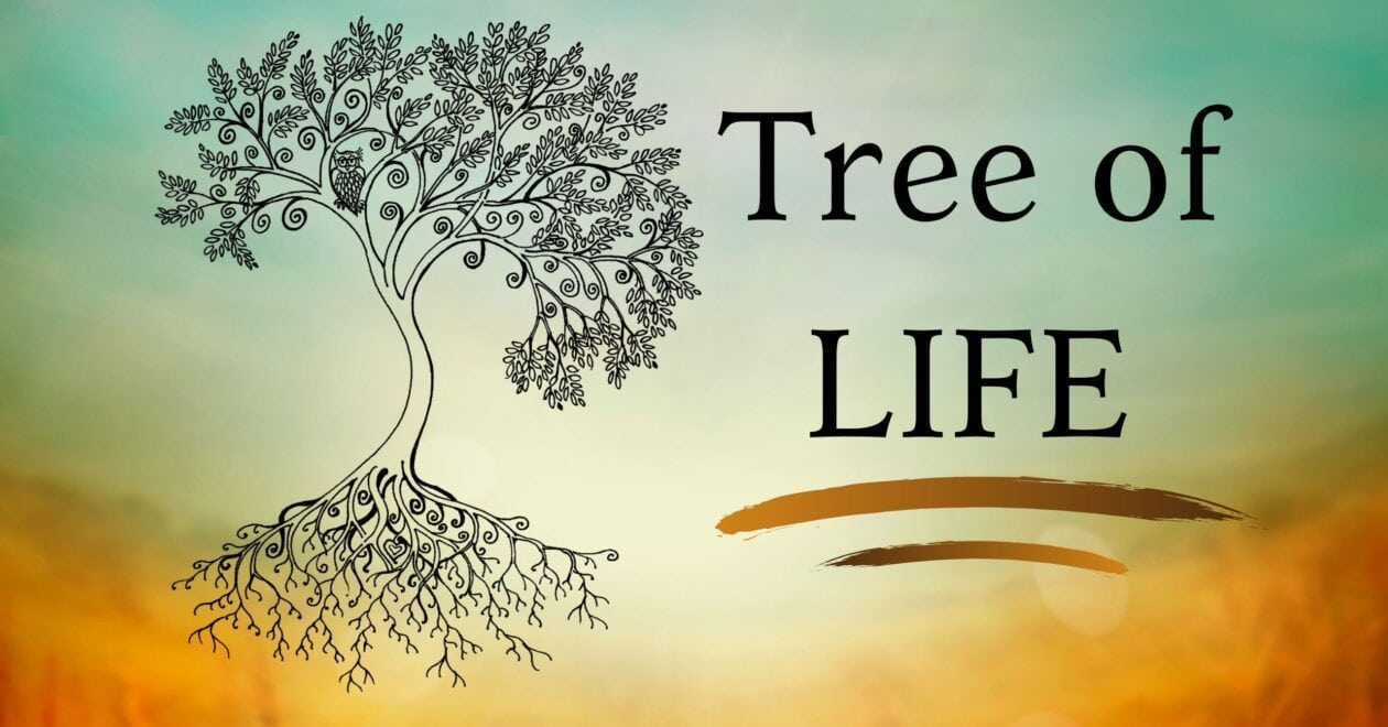 Blog: Tree of Life