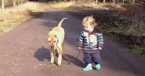 We're Obsessed With This Adorable Baby And His Dog Best Friend!