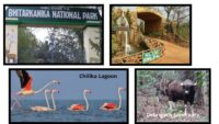 National Parks And Wildlife Sanctuaries In Odisha