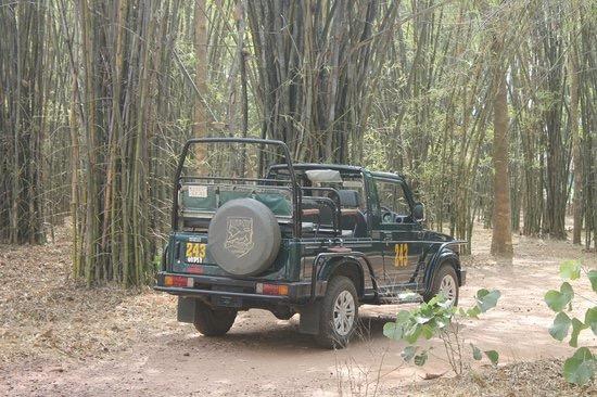 Book Kanha Jeep Safari