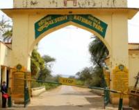 Sariska Safari Gate