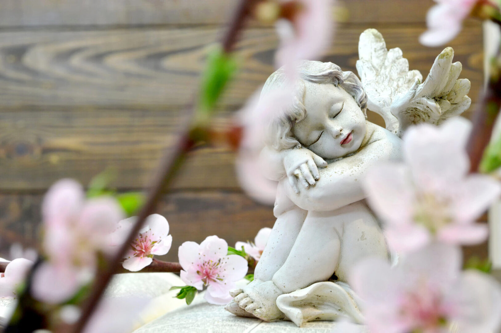 Angel and spring flowers