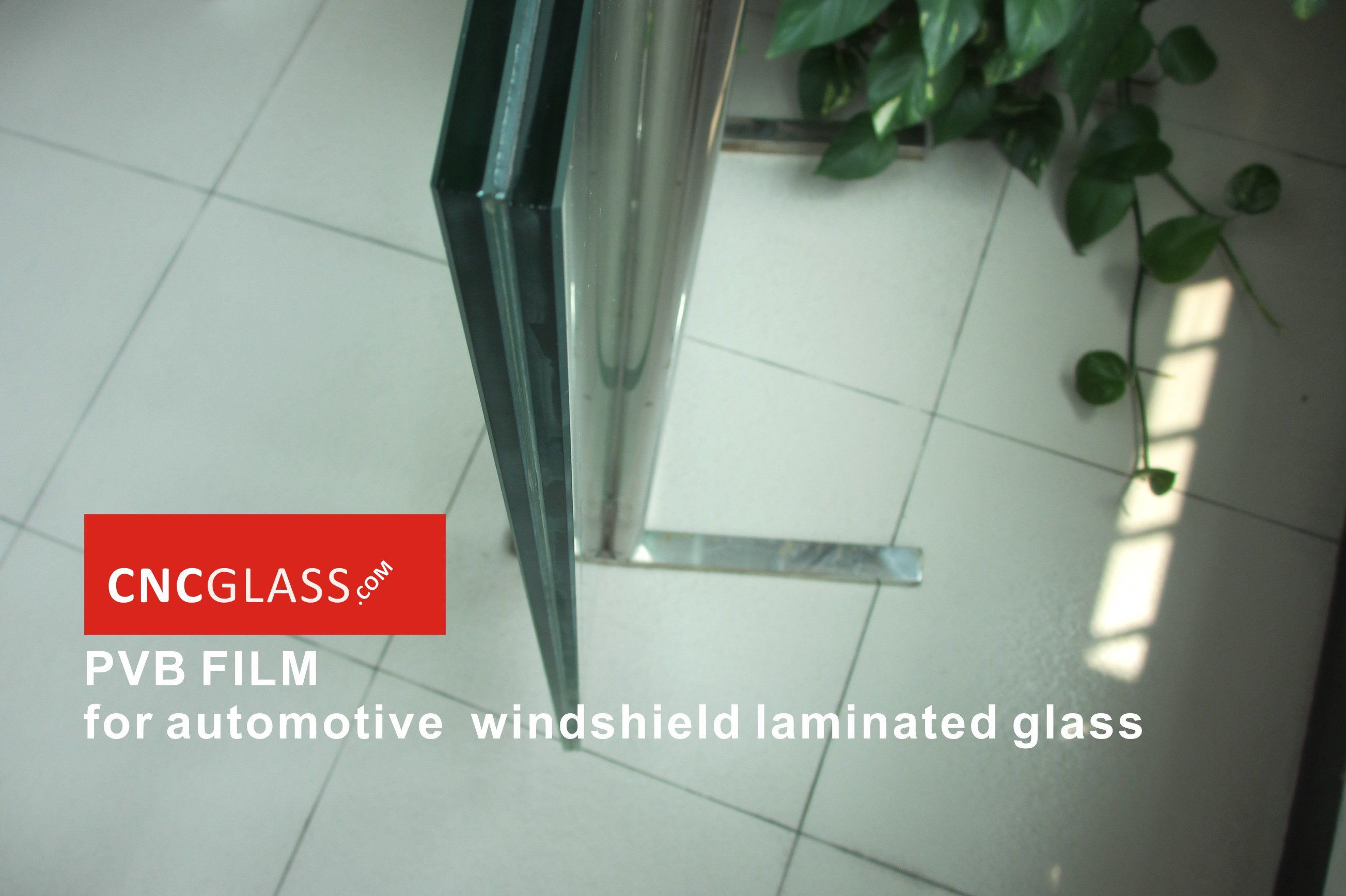 PVB FILM for automotive windshield laminated glass (4)