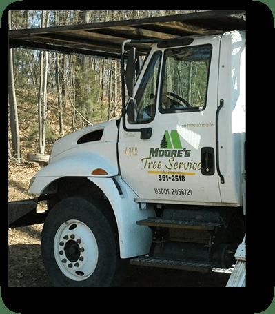 Moore's Tree Service @ Company, LLC