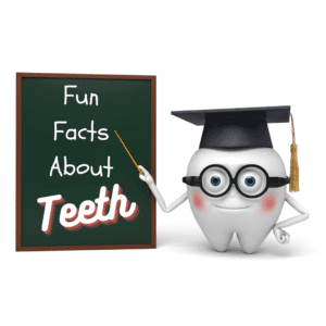 Fun facts about Teeth (1)