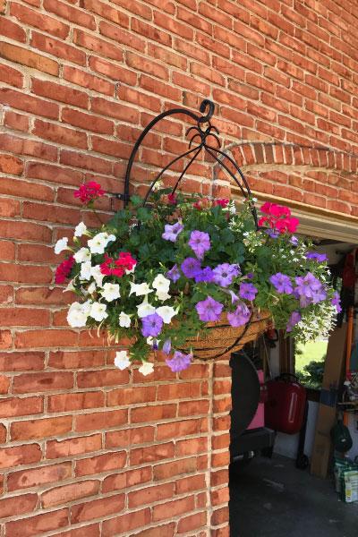 hanging-flower-basket-photo-sandys-back-porch